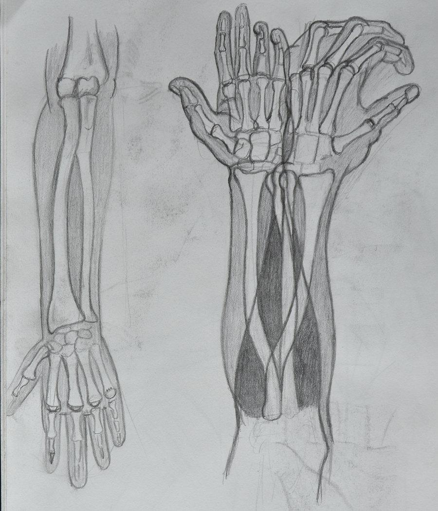 arm_rotation
